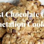 The Best Chocolate Chip Lactation Cookie