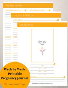 week-by-week-neutral-pregnancy-journal
