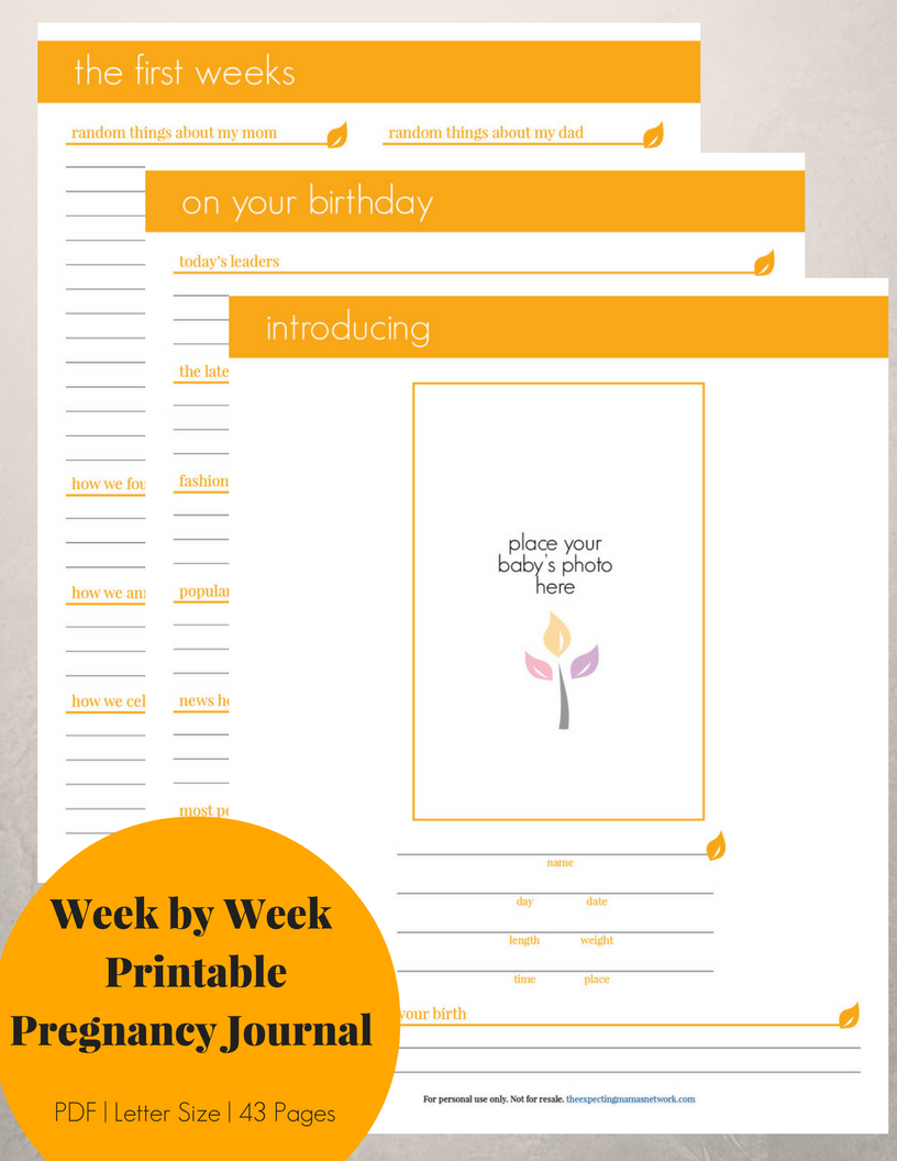 image about Printable Pregnancy Journal known as Being pregnant Magazine Printable - Impartial