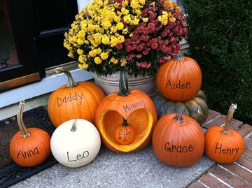 Curved pumpkins for pregnancy announcement