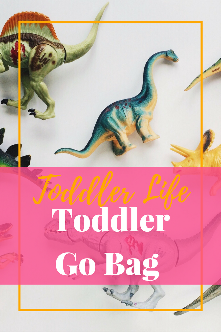 Everything a toddler needs to keep themselves entertained whilst on the road or out and about - the Go Bag! #toddler #busybag