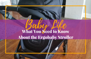 What You Need to Know About the Ergobaby Stroller